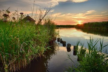 Vogelkijkhut Ilperveld van John Leeninga
