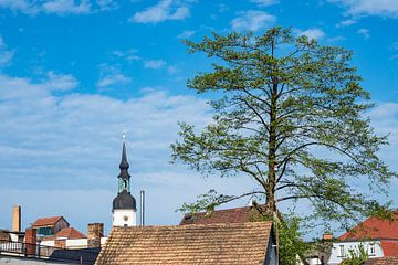 View to Luebbenau, Germany van Rico Ködder