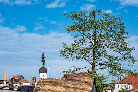 View to Luebbenau, Germany