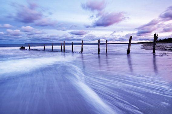 Houten palen aan het strand van de Oostzee in het avondlicht