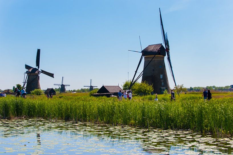 Windmills as far as the eye van Brian Morgan