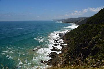 Great Ocean Road autorit in het zuiden van Australië van Bianca Bianca