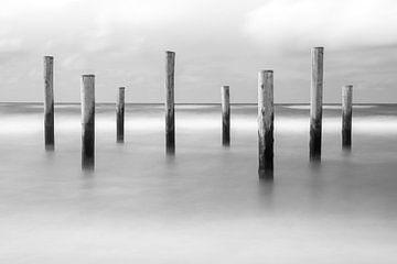 Poteaux de plage dans la mer