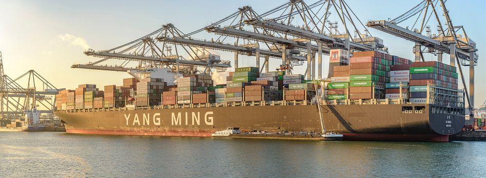 Containerschepen in de haven van Rotterdam van Sjoerd van der Wal