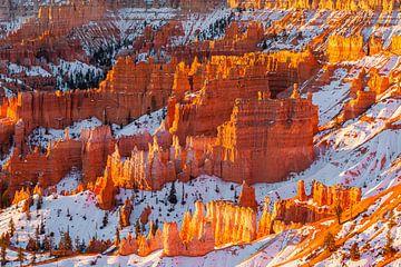 Winter zonsopkomst in Bryce Canyon N.P, Utah van Henk Meijer Photography