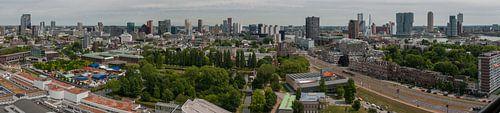 Skyline Rotterdam panorama van