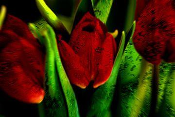 Concept flora : The red queen van Michael Nägele