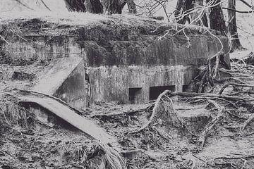 Bunker, 2. Weltkrieg von Wendy Tellier - Vastenhouw
