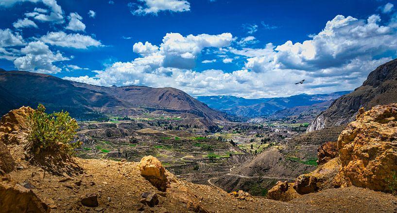 Uitzicht over de Colca vallei, Peru van Rietje Bulthuis