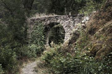 L'ancienne porte du château 2 sur Jörg Hausmann