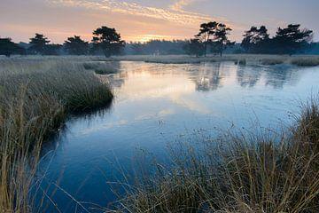 Eingefrorener See von Mark van der Walle