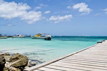 Rodger's beach, Aruba van Talitha Blok