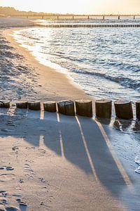 Buhnen am Strand von Zingst, Ostsee