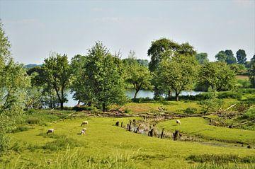 Landschap plaatje in Herwijnen von Marije van der Vies