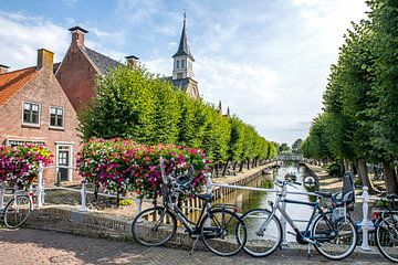 Fahrräder in Schlössern von Hanneke Luit