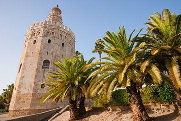 De wachttoren Torre del Oro in Sevilla van