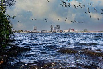 Almere Skyline met Vogels