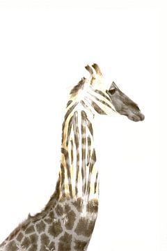 Giraf en zebra compositie van Bobsphotography