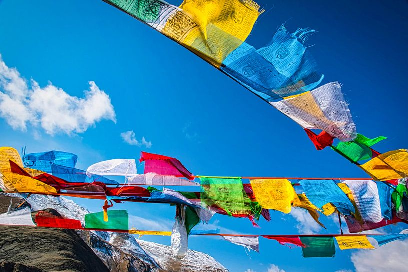 Wapperende gebedsvlaggen op de Tibetaanse hoogvlakte van Rietje Bulthuis