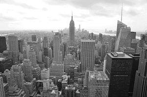 New York City View 2 van