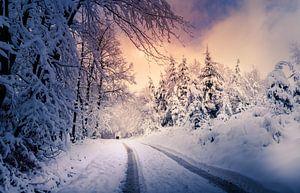 Winter-Spaziergang von Wim van D