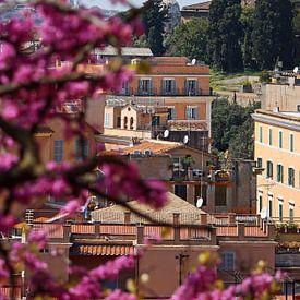 Rome ... eternal city XV van Meleah Fotografie