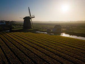 Goedemorgen vanuit Noord-Holland van