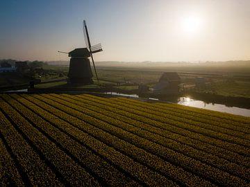 Goedemorgen vanuit Noord-Holland sur K.C. Statia