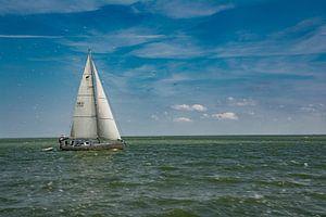 Zeilboot. van Tanja de Mooij