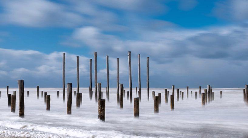Strand Petten  van Dick van der Wilt