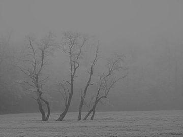 Winterlandschaft Bäume von Alies werk
