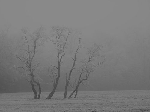 9. Winterlandschap bomen van Alies werk