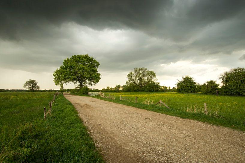 Typische Niederlande von Jan Koppelaar