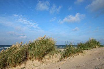 Strandaufgang im Herbst von
