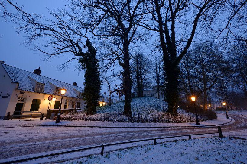 Bruntenhof en Lepelenburg in Utrecht van Donker Utrecht