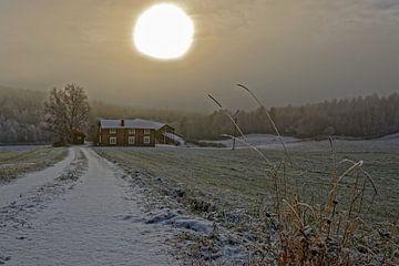 Norwegen, Spätherbst van Michael Schreier