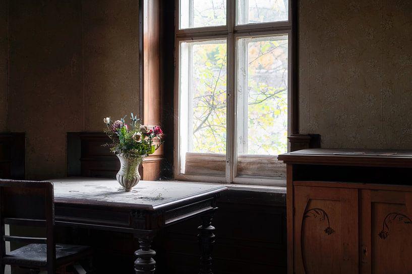 Verlassene Blumen im Licht. von Roman Robroek