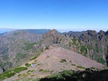 Bergwandeling op Madeira van Ingrid Van Maurik