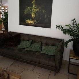 Photo de nos clients: Still life Fennel sur Monique van Velzen