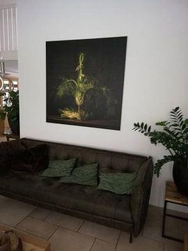 Klantfoto: Stillleven Venkel van Monique van Velzen