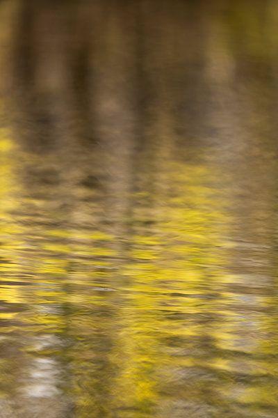 Water in Monet stijl van FotoSynthese