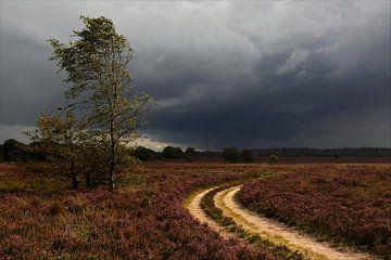 Heide bij een onweersbui van Ron Hoefs