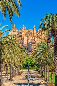 Gezicht op Kathedraal La Seu met palmbomen in Palma de Mallorca van Alex Winter