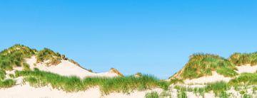 Panorama van duinen met duingras bij de zee op een zomerse dag. van Sjoerd van der Wal