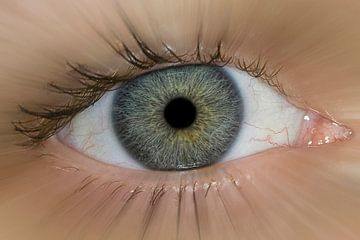 Eye-Fi van Wouter Kok
