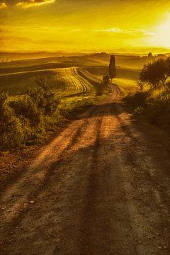 Licht der Toskana von