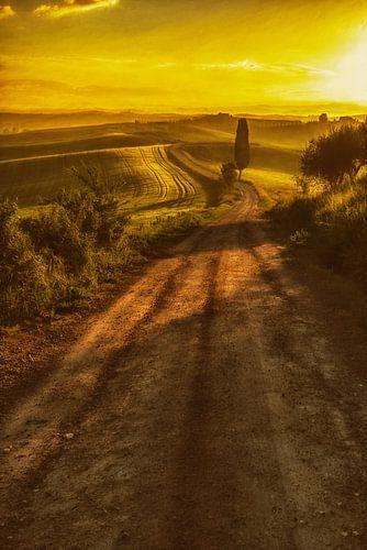 Toscaans Licht von Lars van de Goor