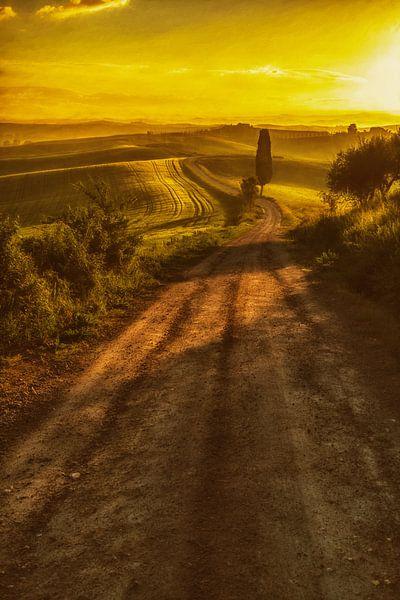 Toscaans Licht sur Lars van de Goor