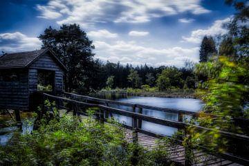 Mystic Lake van Liberty Ragazza Biesma