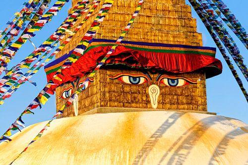 eyes of buddha van